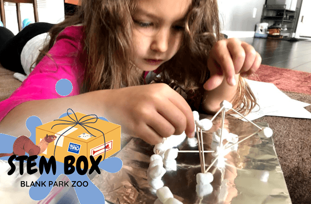 Child Playing with STEM Box